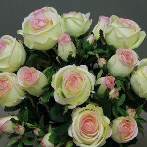 114920 Rose