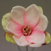 116889 rose