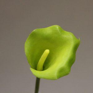 KL2109 vert