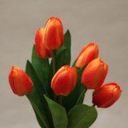 CX001 orange