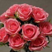 YM002 rose