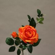 YM010 orange