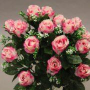 16085 rose