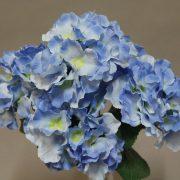 YH4504 Bleu